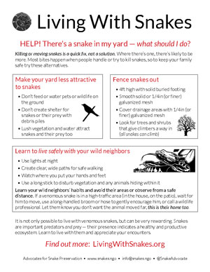 Living With Snakes Factsheet