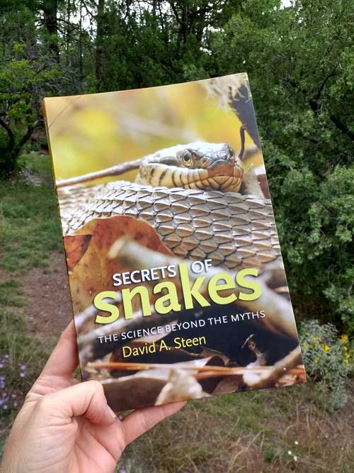 Secrets of Snakes by David Steen