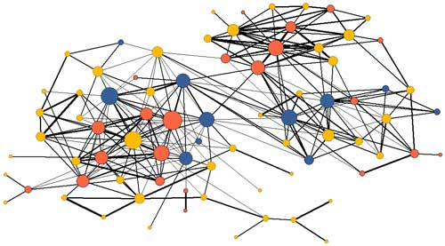 In this social network graph, associations are represented by lines between nodes (individuals), weighted so that stronger associations are heavier lines. Node color indicates whether that individual is male (blue), female (orange), or juvenile (yellow) and node size indicates association strength (sum of their association indices).