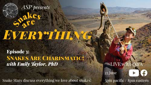 """""""Snakes Are Everything Episode 2: Snakes Are Charismatic"""" written on an image of Emily holding a Prairie Rattlesnake"""