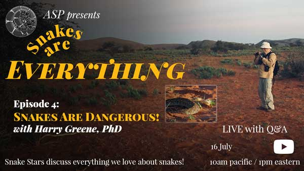 """""""Snakes Are Everything Episode 4: Snakes Are Dangerous"""" written on an image of Harry photographing snakes"""